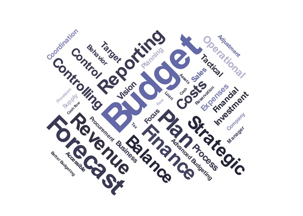 ACT104 Online: Budget & Financial Planning